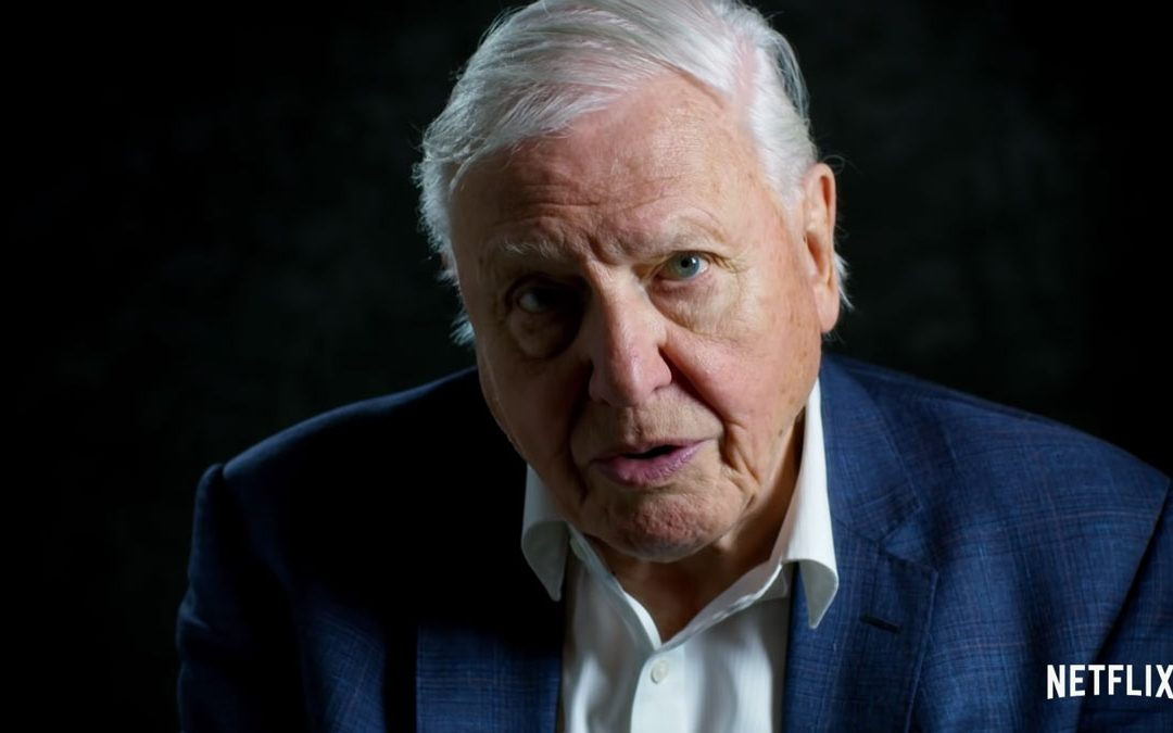 """""""A Life on Our Planet"""" Is David Attenborough's Legacy"""