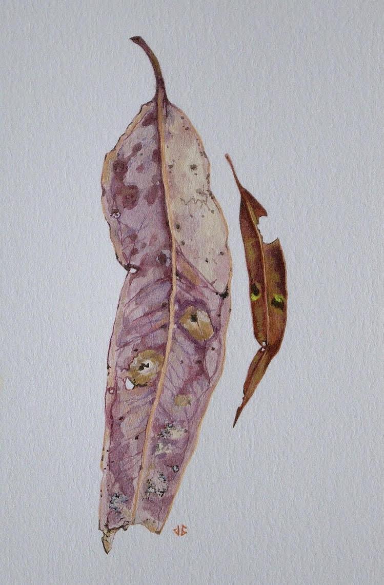 Jenny Gilbertson Painting